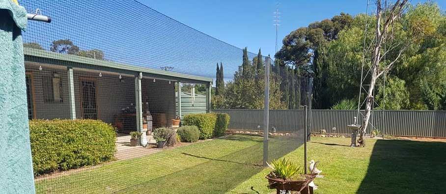 Cat Enclosures Run Nets Adelaide Melbourne Perth Sydney Brisbane